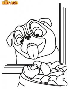 Top 10 The Nut Job 2 Coloring Pages