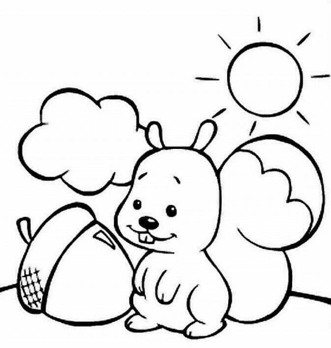 14 Zara Finds An Acorn For Thanksgiving coloring page