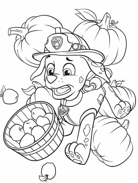 18 Paw Patrol Thanksgiving coloring page