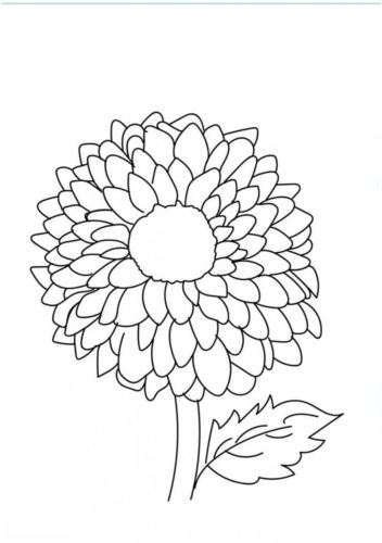 20 Dahlia flowers coloring pages