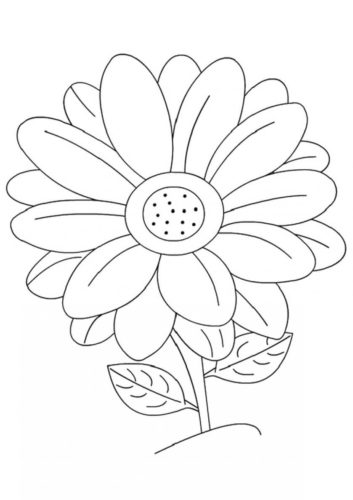 21 Daisy flowers coloring pages