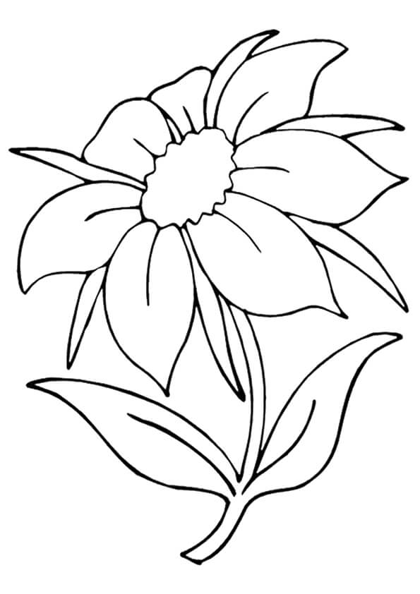pics of coloring pages flowers - photo#14