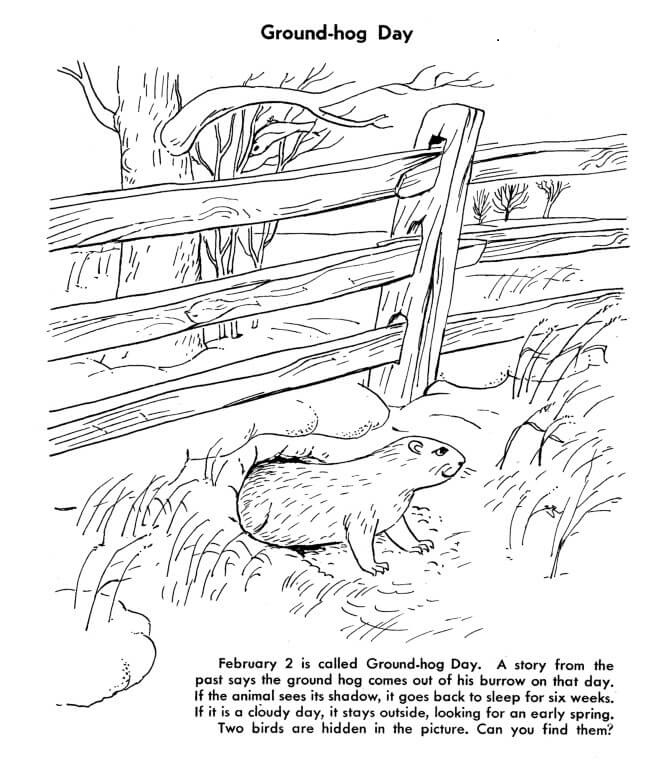 free printable groundhog coloring pages - Groundhog Coloring Page