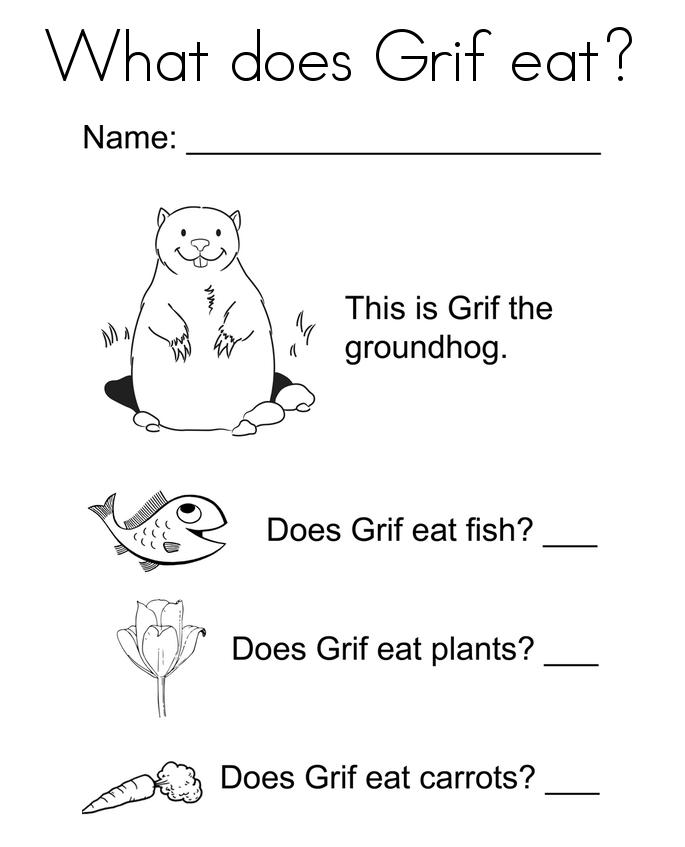 Groundhog Activity Sheet printable
