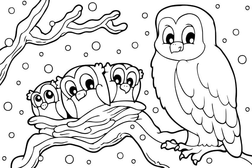 Owl Winter Coloring Pages