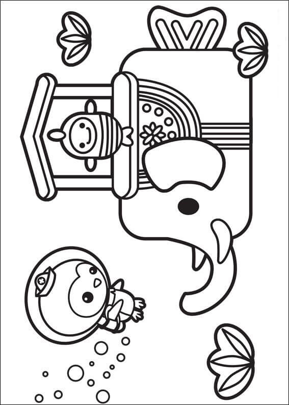 Free Printable Octonauts Coloring Sheets Elephish