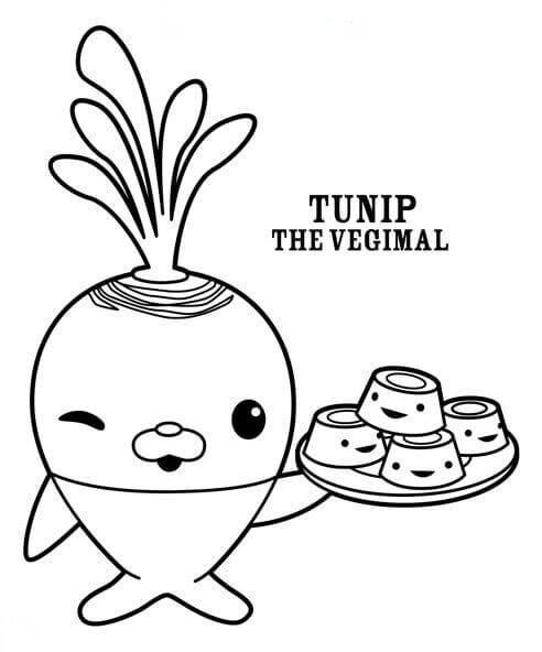 Octonauts Coloring Pages Tunip Vegimal