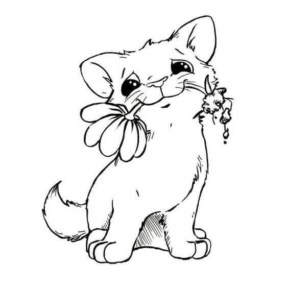 Baby Cat Coloring Pages