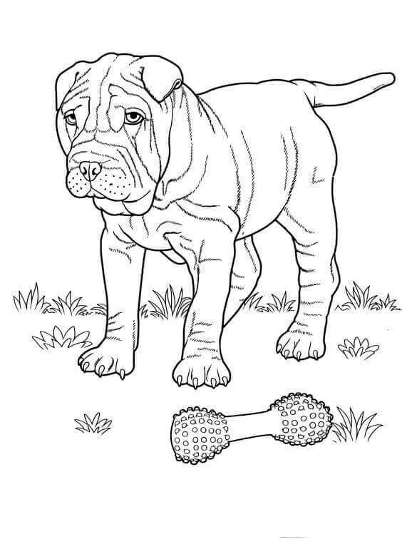 Free Print out Dog coloring pages for kids | Puppy coloring pages ... | 756x564