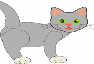 Cat coloring images