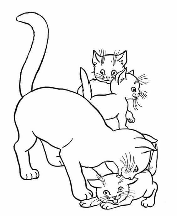 Free Cat Coloring Pages Printable