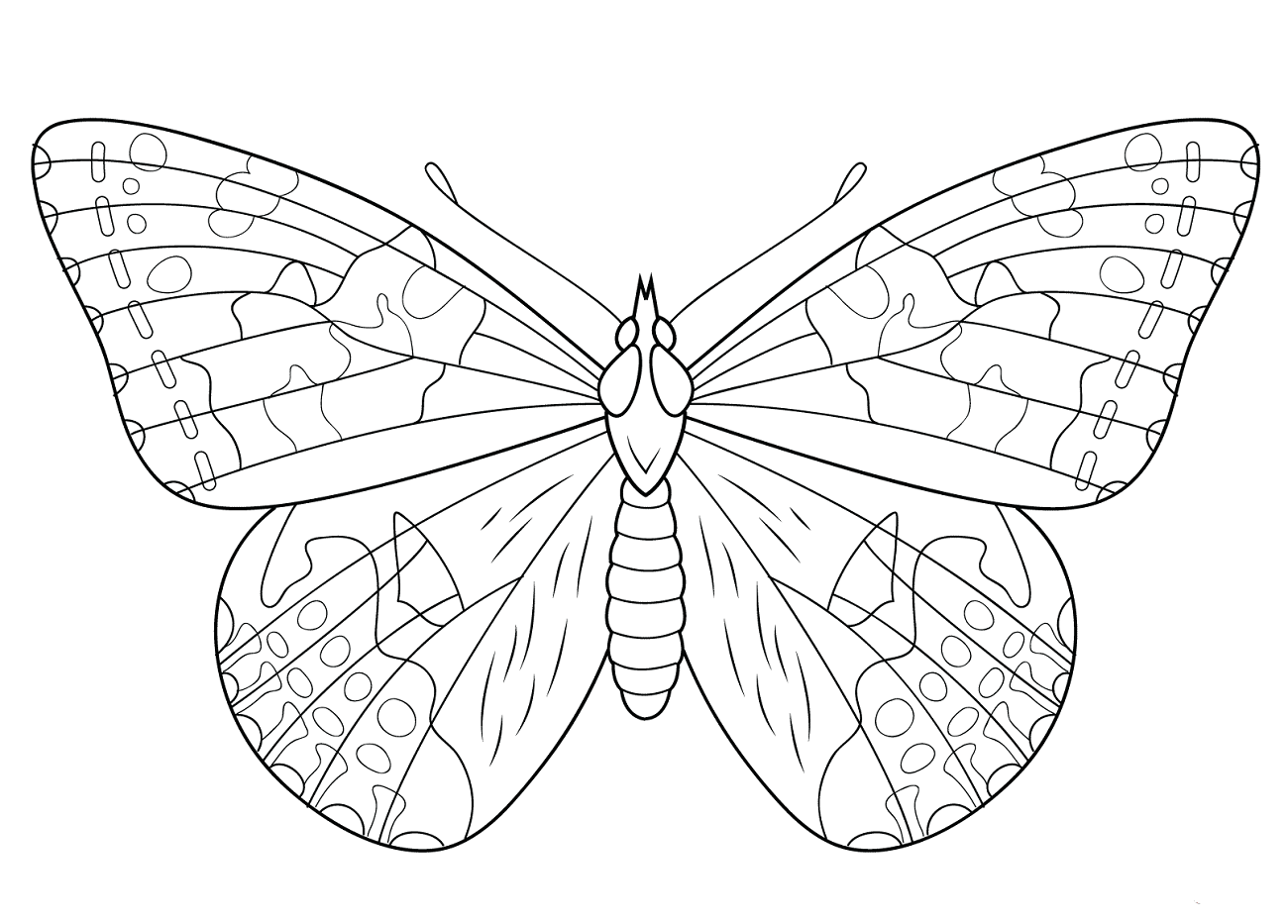 Painted Lady Butterfly Coloring Page