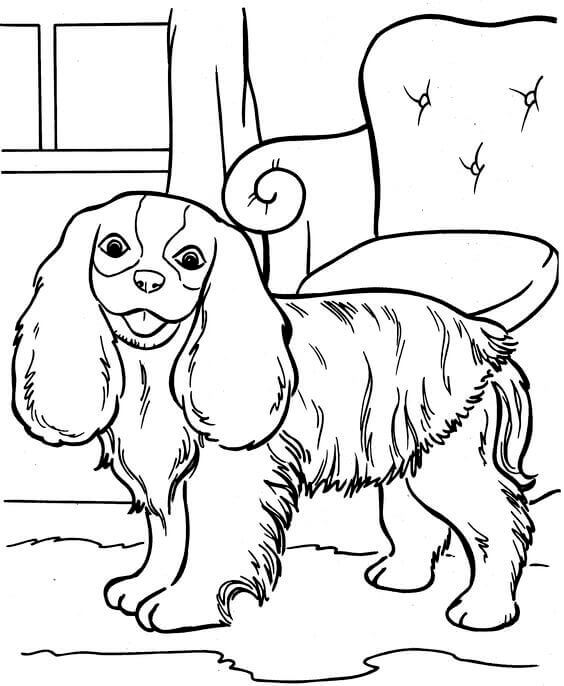 Printable Dog Coloring Pages