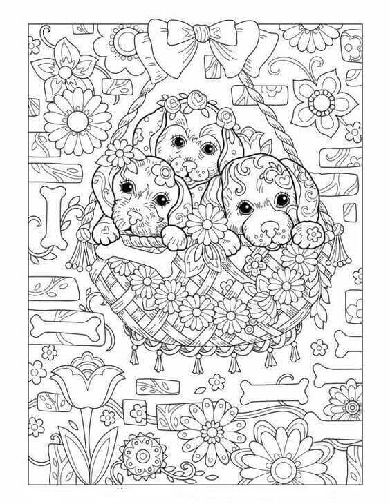 Puppy Colouring Sheet For Adults