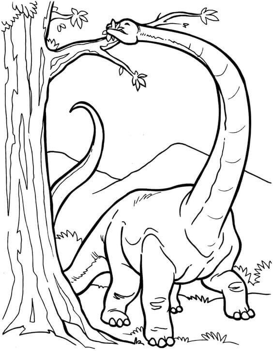 herbivore dinosaur coloring pages - photo#6