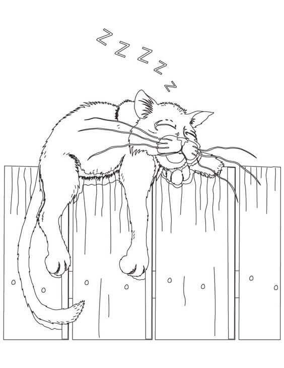 Sleeping Cat Colouring Pages