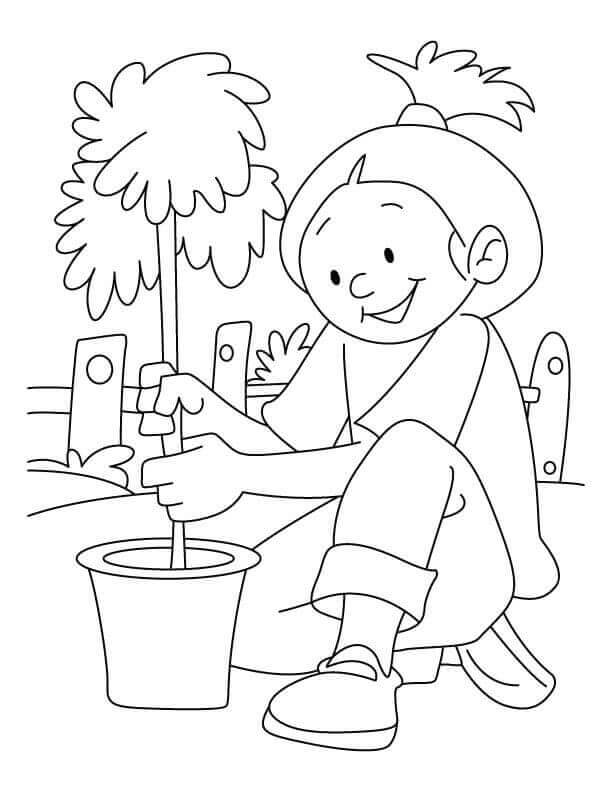 Arbor Day Coloring Pages To Print