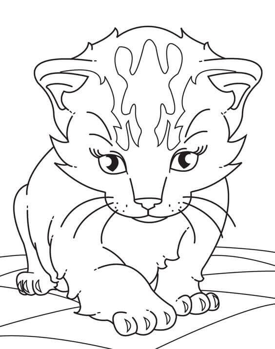 Cartoon Kitten Coloring Pages