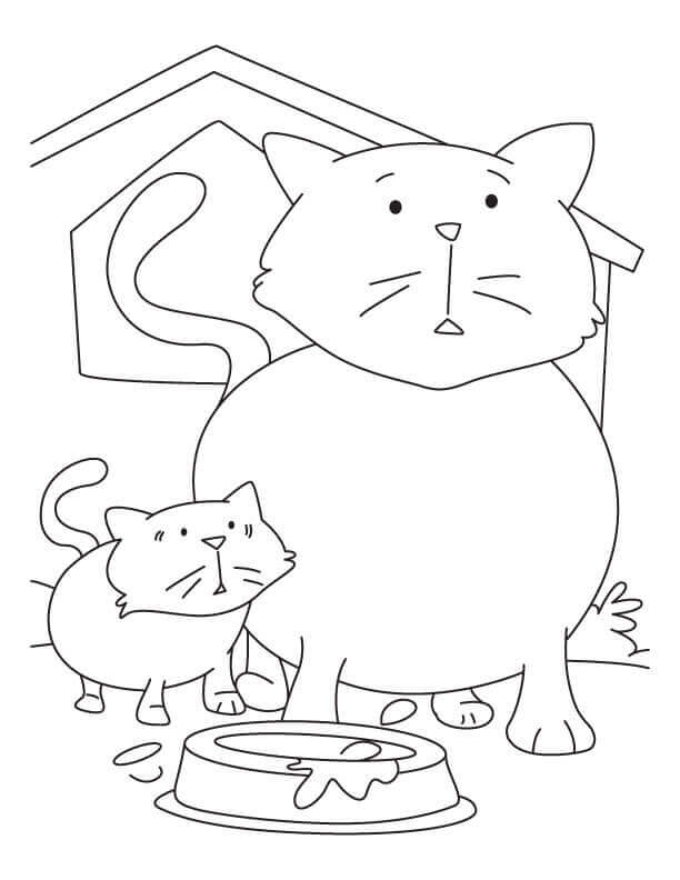 Cat And Kitten Coloring Sheets