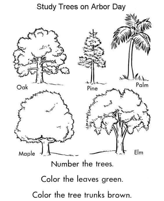 Free Arbor Day Coloring Pages