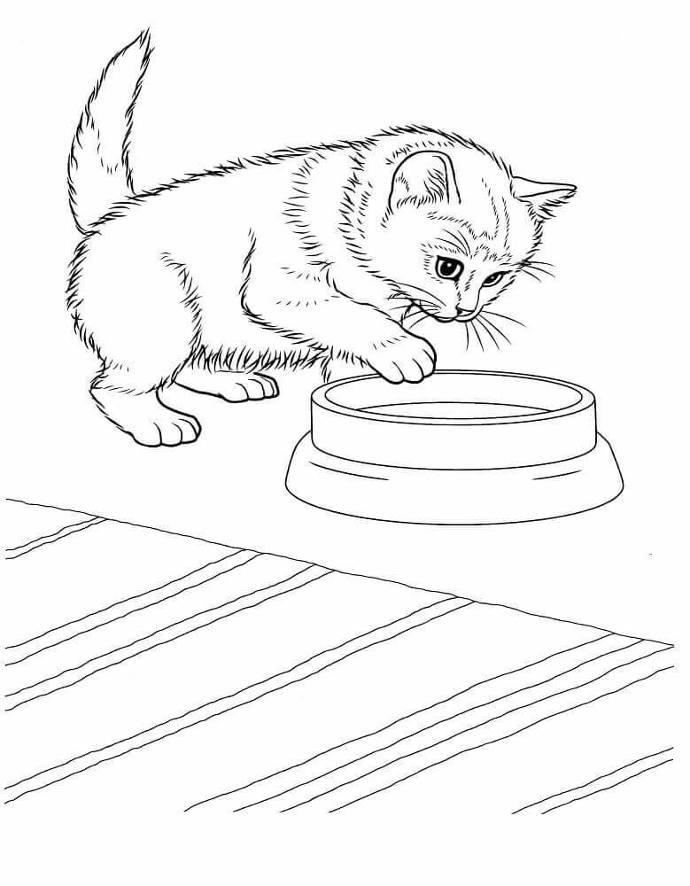 Free Kitten Coloring Pages To Print