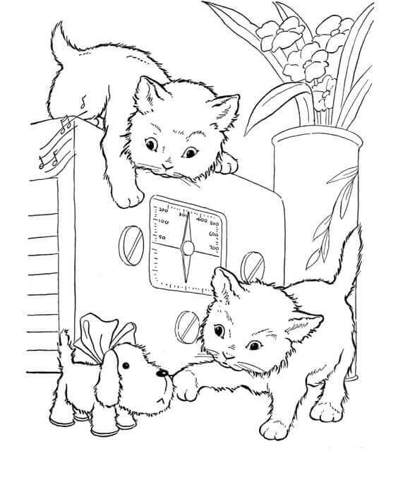 30 Free Printable Kitten Coloring Pages Kitty Coloring Sheets