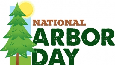 National Arbor Day Coloring Images