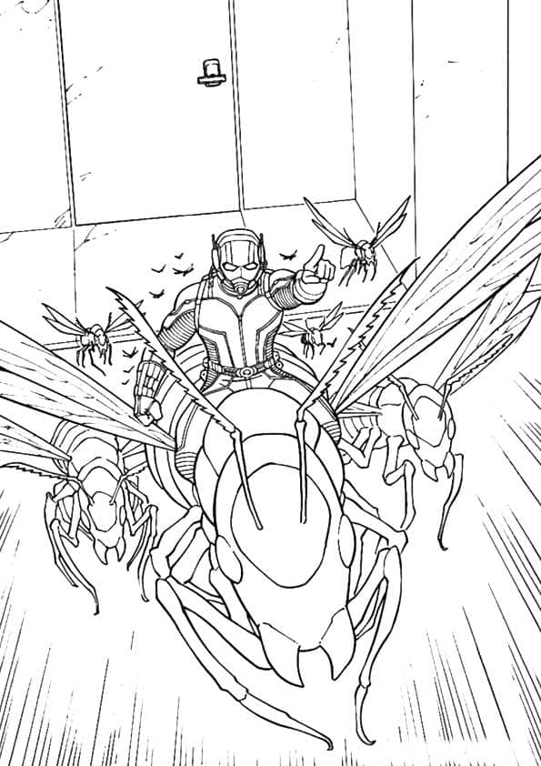 Ant Man And Antony Coloring Page