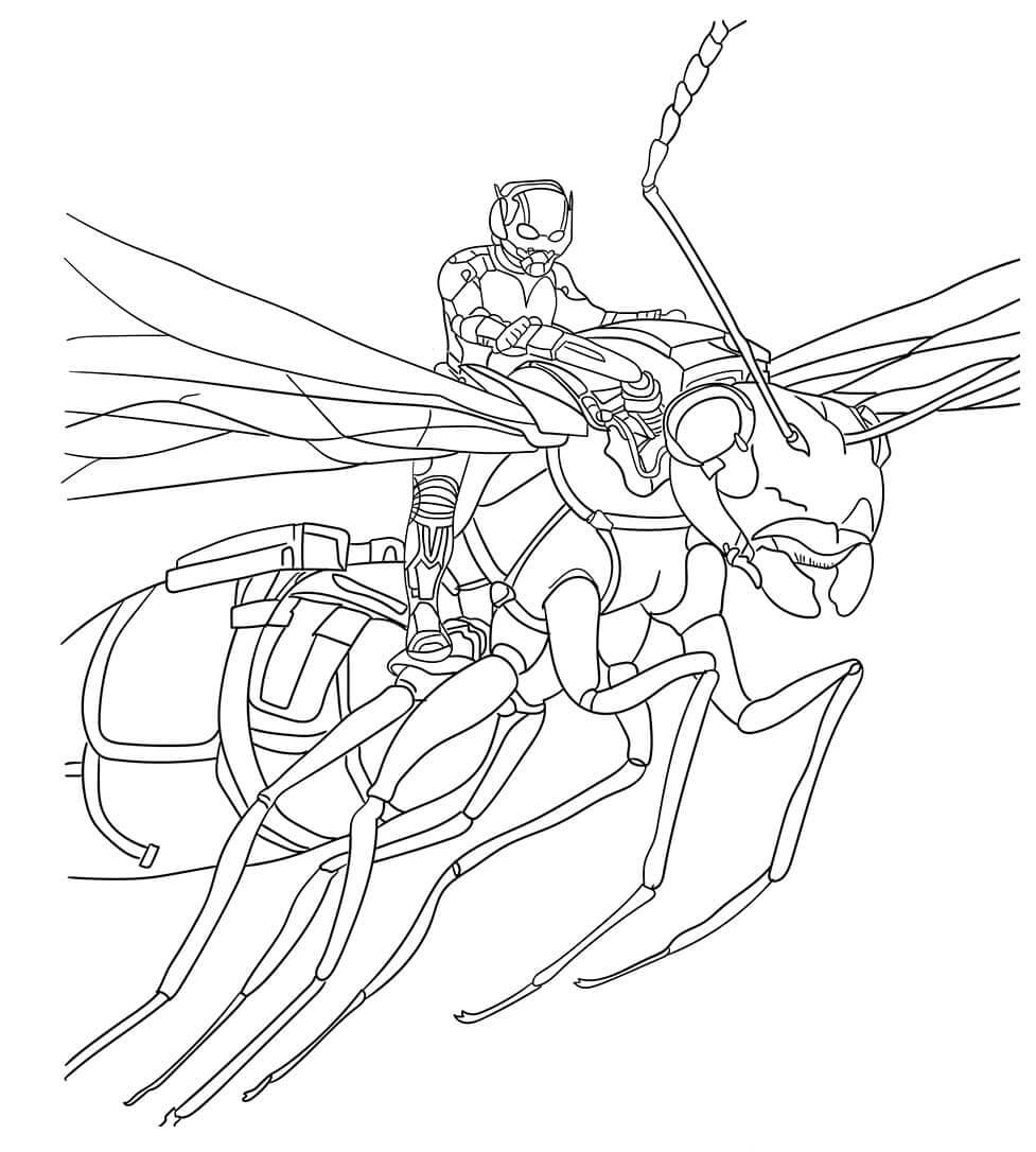 Ant Man And Antony Coloring Sheet
