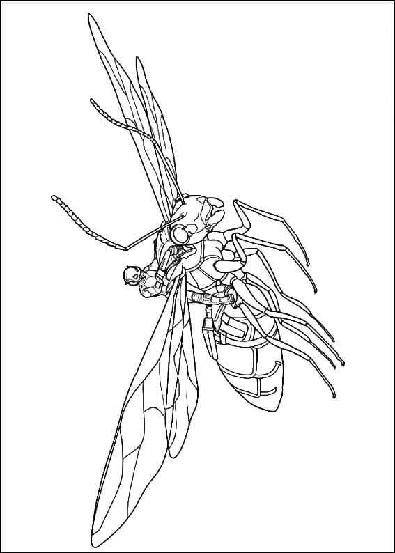 Antony From Ant Man Coloring Page