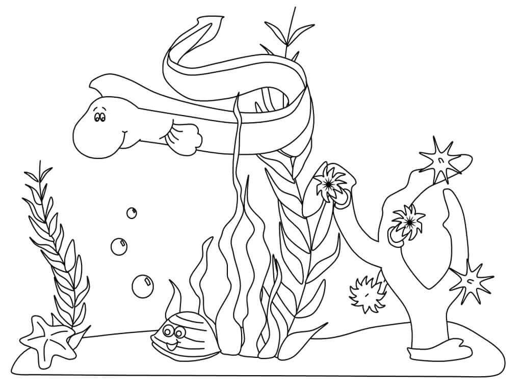 Free Printable Under The Sea Coloring Sheets