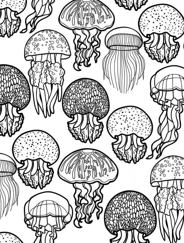 Under The Sea Creatures Coloring Pages