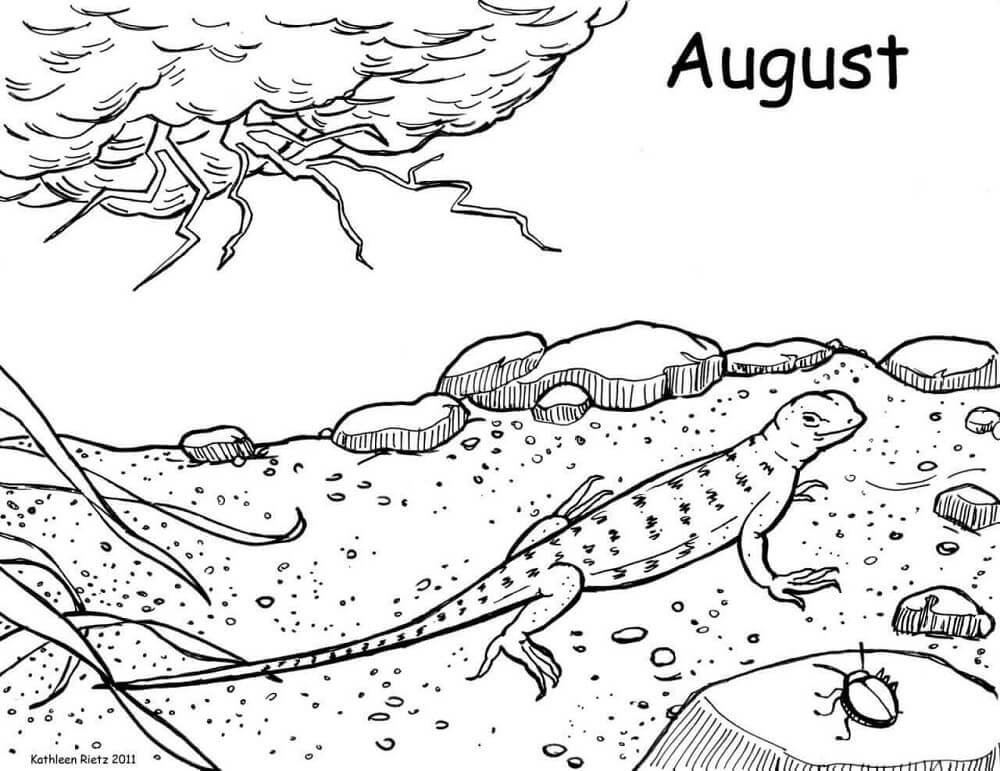 World Lizard Day August Coloring Pages