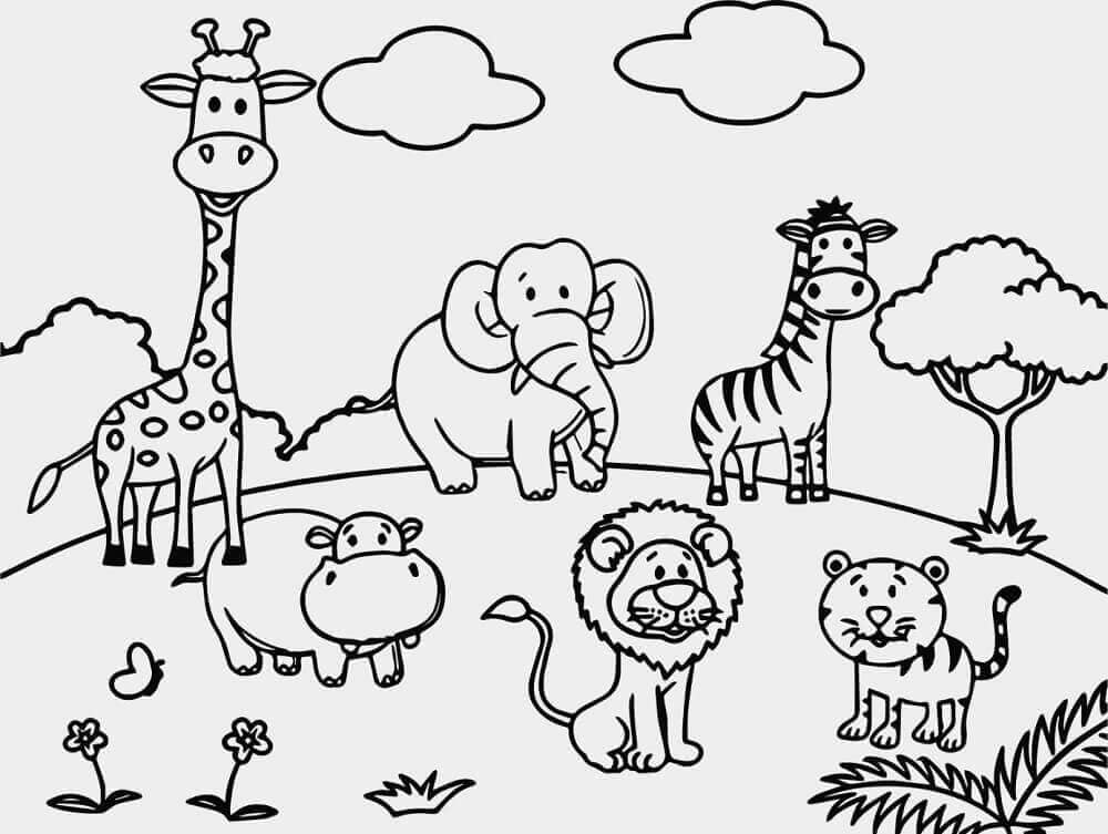 Cute Zoo Coloring Pages