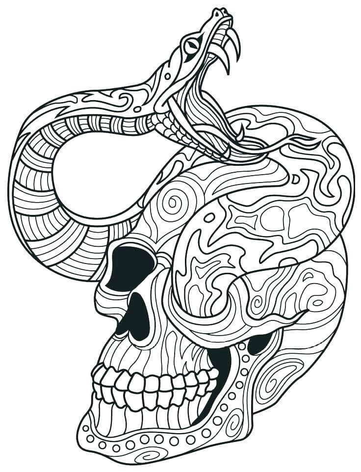 Intricate Sugar Skull Coloring Pages For Adults