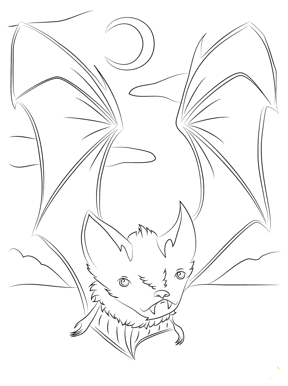 Nocturnal Bat Coloring Pages