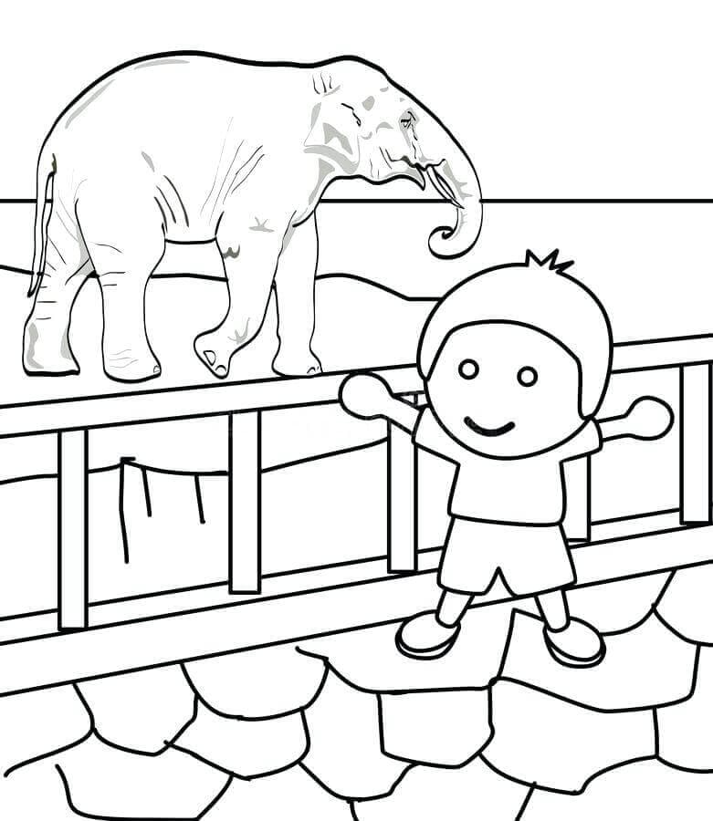 Zoo Coloring Pages To Print