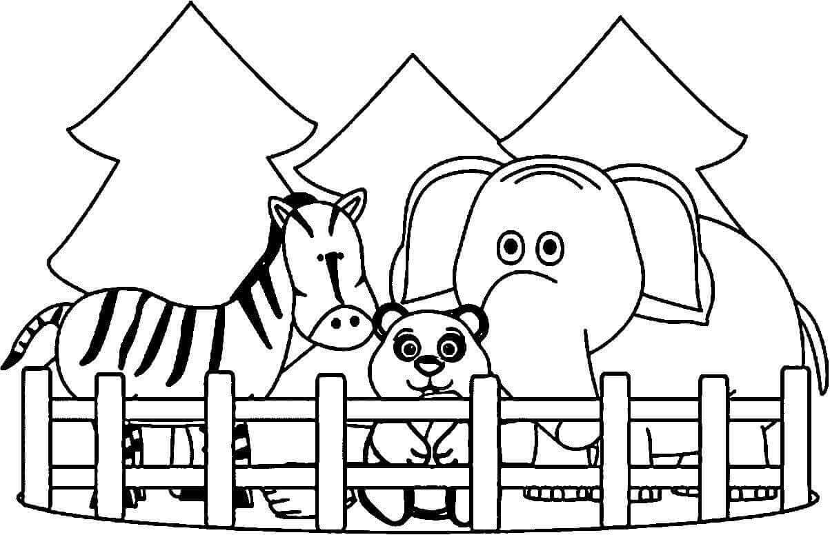 Zoo Coloring Printables Free