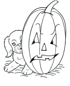Dog And Jack O Lantern Coloring Image
