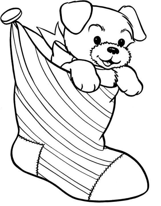 Dog In Stocking Coloring Page