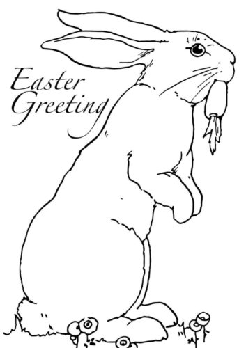 Easter Rabbit Coloring Image