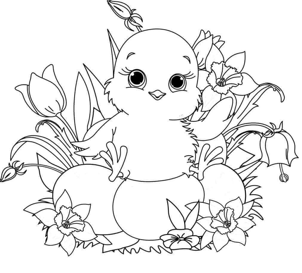 Easter Chick Coloring Pages Printable