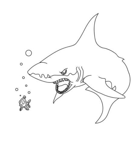 Scary Shark Coloring Page