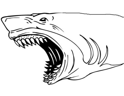 Terrifying Shark Coloring Page