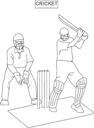 Free Cricket Sport colouring page