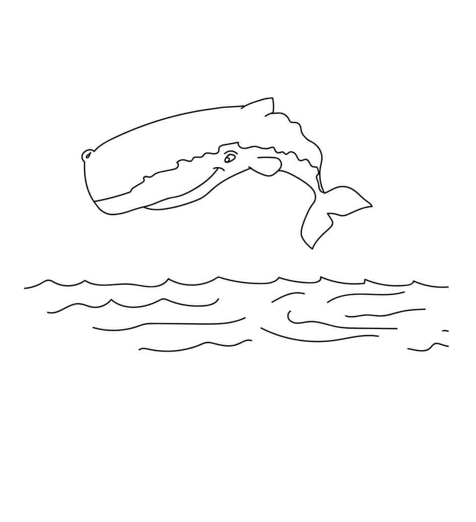 Bowhead Whale coloring page