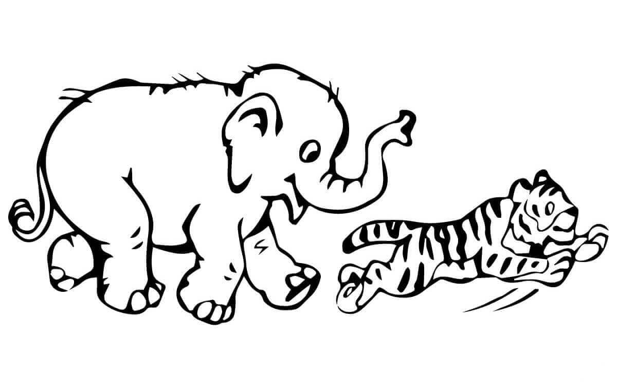 Elephant and Tiger coloring page
