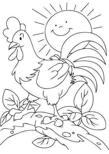 Farm Animal Cock coloring page