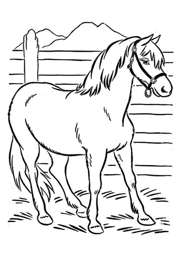 Farm Animal Horse coloring page