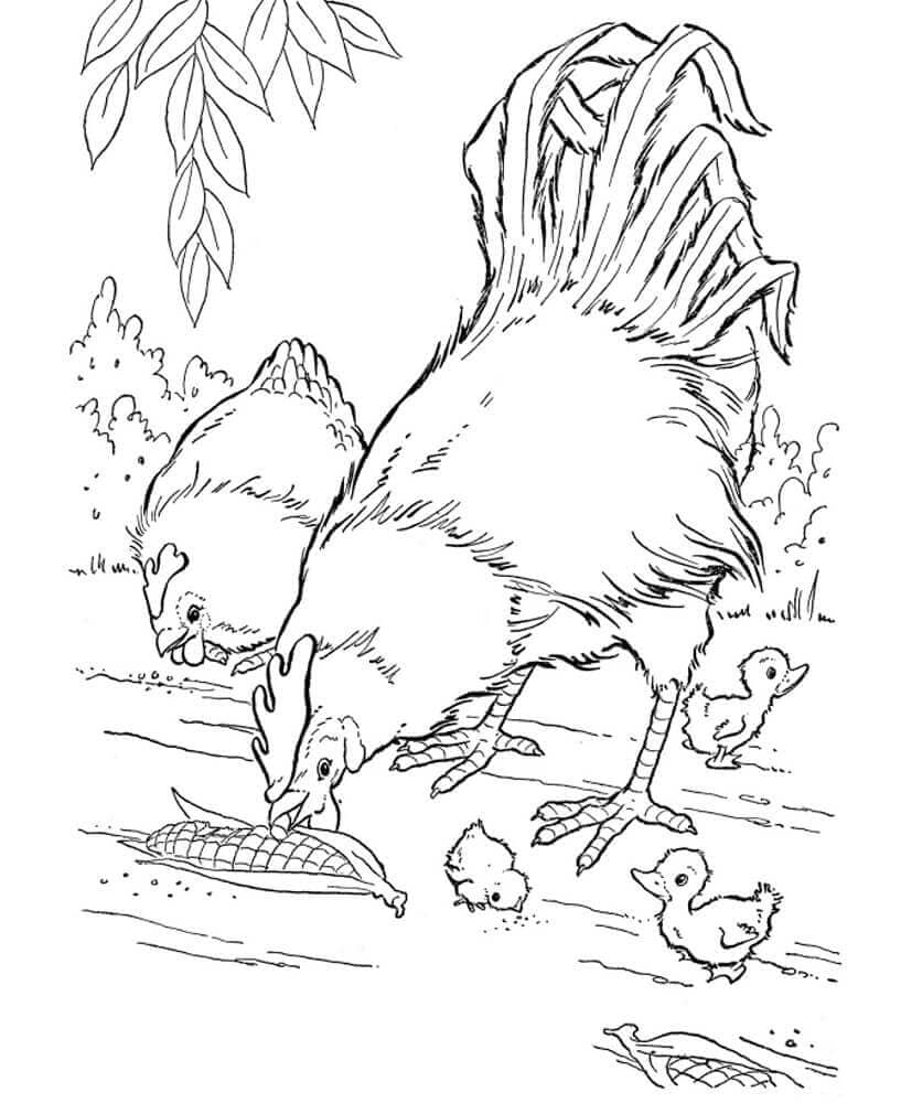 Farm Animals coloring sheets to print